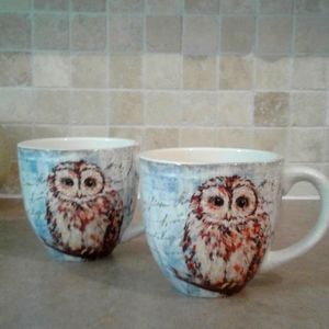 ironstone pier 1 imports exclusive owl coffee mugs